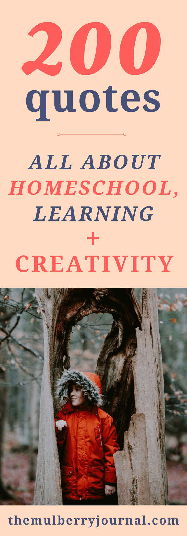 200 Inspiring Quotes About Homeschooling Learning And Creativity